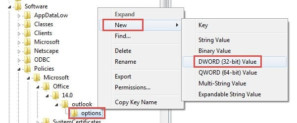 Create a New DWORD Value under Options Key