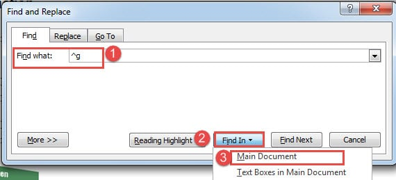 """Enter """"^g"""" in """"Find what"""" Box->Click """"Find In""""->Choose """"Main Document"""""""