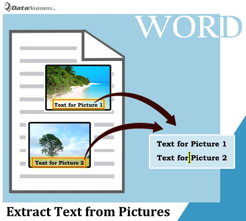 Extract Text from Pictures and File Printouts to Word Document via OCR