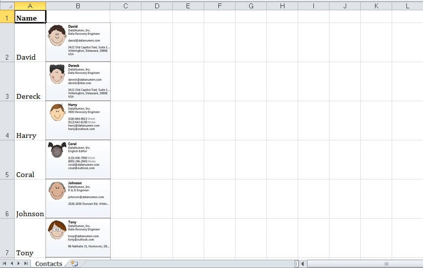 Exported Business Cards in Excel