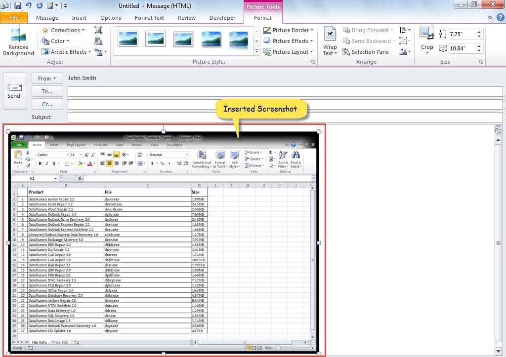 Inserted Screenshot of Excel Window