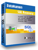 DataNumen SQL Recovery