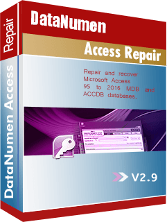DataNumen Access Repair 2.9 Boxshot