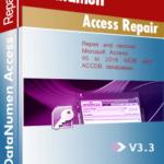 DataNumen Access Repair የቦክስ ሾት