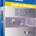 DataNumen Database Recovery বক্সশট