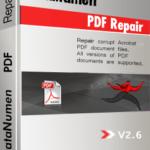 DataNumen PDF Repair బాక్స్ షాట్