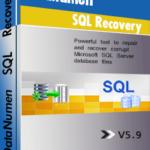 DataNumen SQL Recovery Qutusu