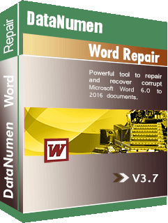 DataNumen Word Repair የቦክስ ሾት