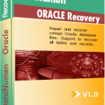 DataNumen Oracle Recovery ボックスショット
