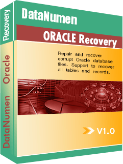 DataNumen Oracle Recovery جعبه عکس
